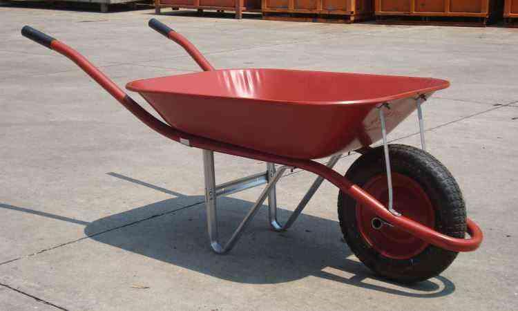 Com capacidade para 8,5kg, Gordini Soft foi o primeiro carrinho da linha - Bruno Freitas/EM/D.A Press