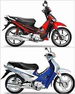 Motoneta Super tem motor de 125 cm³, freio a disco e rodas de 17 polegadas. Já a Fox 110 é o modelo de entrada, mas dispõe de partida elétrica e freio a disco dianteiro - Fotos: MVK/Divulgação