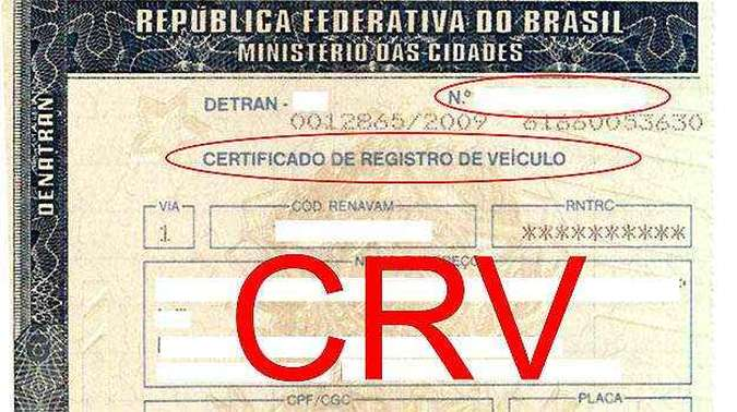 (foto: DETRAN-AL/Divulgação)