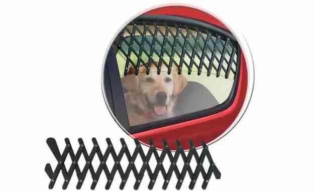 Grade pantográfica garante ventilação e evita que o cão seja projetado para fora - Pet Love/Divulgação