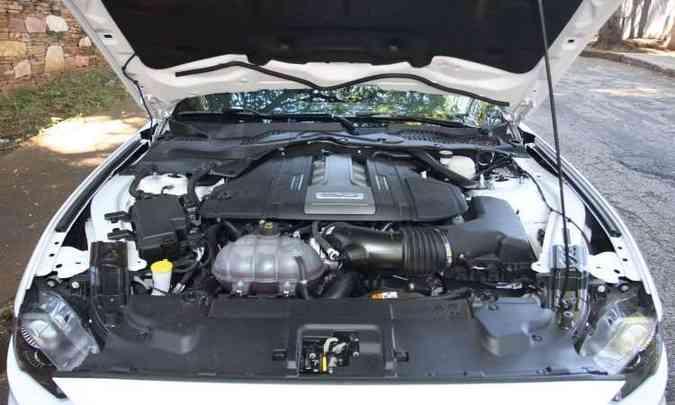 Motorzão V8 5.0 foi batizado como Coyote(foto: Edésio Ferreira/EM/D.A Press)