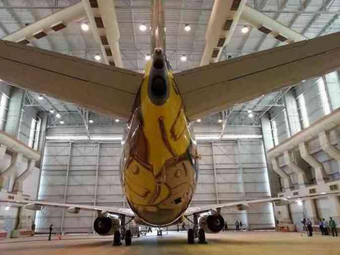 Boeing 737 da Seleção Brasileira na Copa do Mundo 2014Thiago Ventura/EM/D.A PRESS