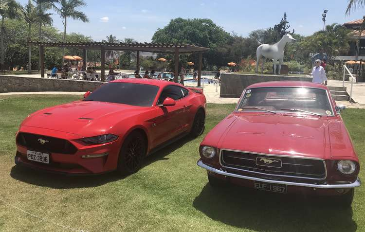 Qual o modelo do Mustang mais caro da foto?  - Thaina Nogueira / DP